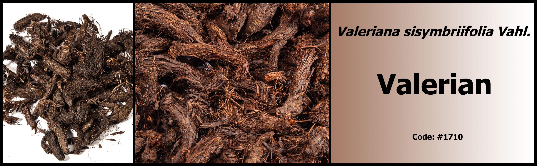 1710_Valerian