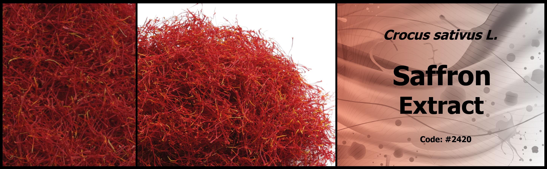 2420_saffron-extract
